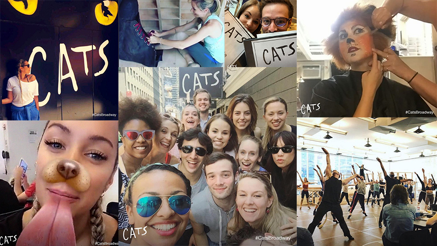 It's Time to Follow the Cats Broadway Revival on Instagra...
