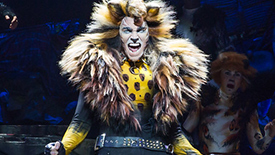 Cats Star Tyler Hanes Reveals How Freddie Mercury, Trevor Nunn & His Cat Chimbley Inspired His Rum Tum Tugger