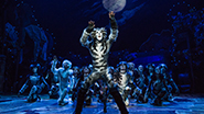 Andy Huntington Jones as Munkustrap and the cast of Cats